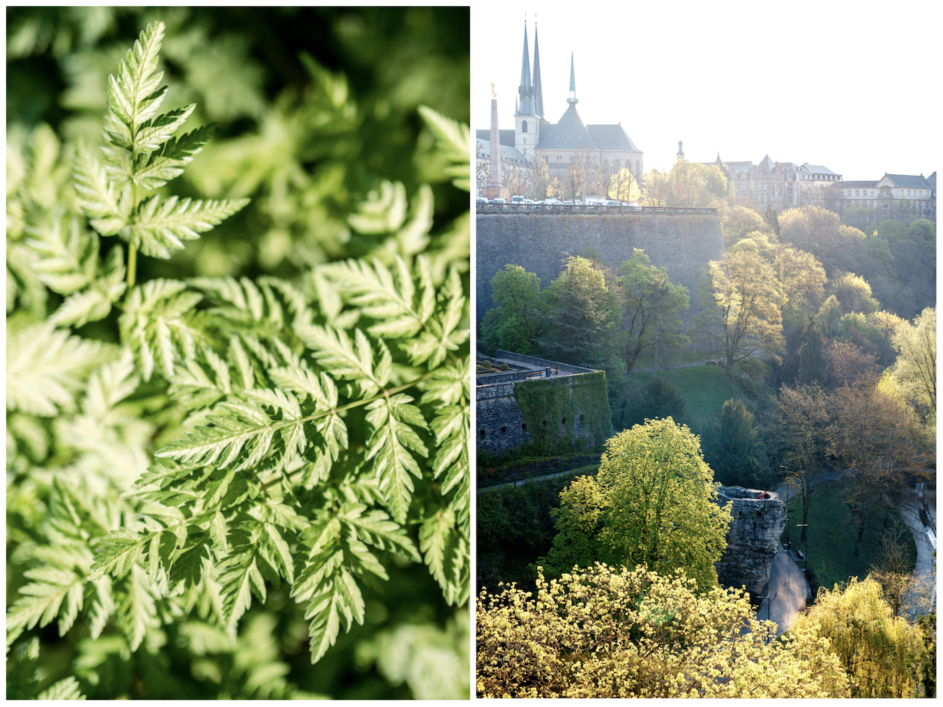 Luxembourg city view Tourist Holidays Photographer